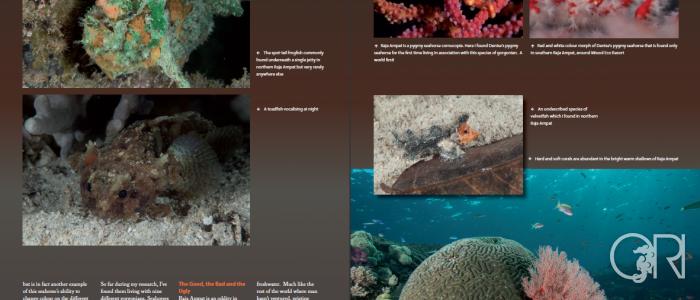 UltraMarine Magazine – Raja Ampat Marine Life Article