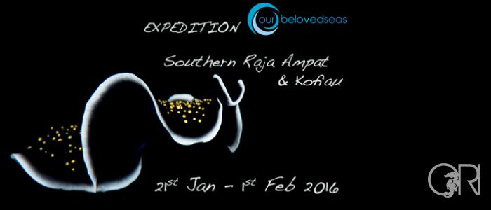 NEW EXPEDITION | SOUTH RAJA AMPAT & KOFIAU ISLAND | DEWI NUSANTARA | 21ST JANUARY – 1ST FEBRUARY 2016